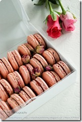 MacaronsRosewaterRaspberry02framed2