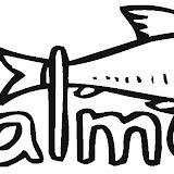 salmon-14-coloring-page.jpg