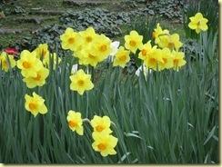 spring2012 034