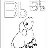 borrego_b.jpg