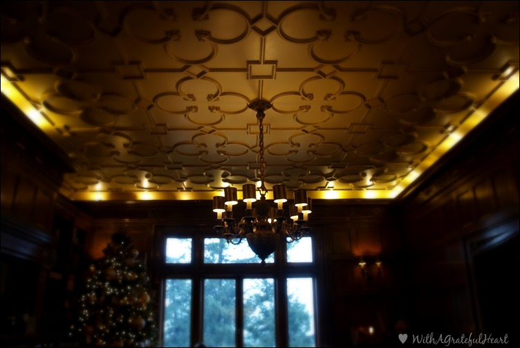 Pittock Mansion - Library Ceiling