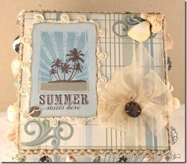 summer starts here box2