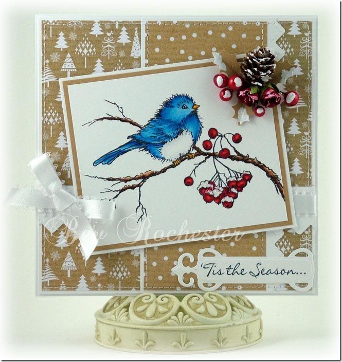 bev-rochester-stampendous-bird
