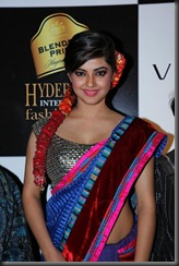 Meera Chopra Latest Hot Photos in Designer Saree