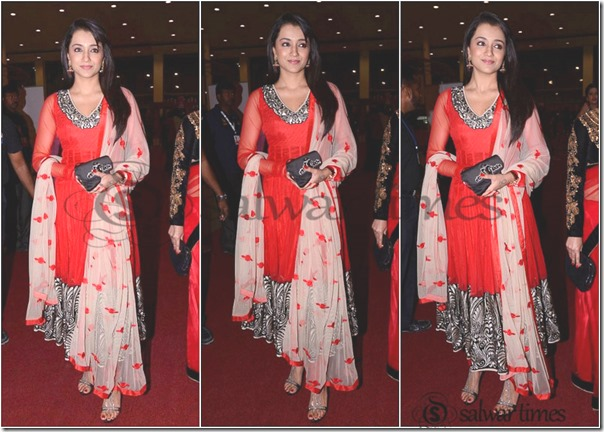 Salwar's_SIIMA_Awards (4)