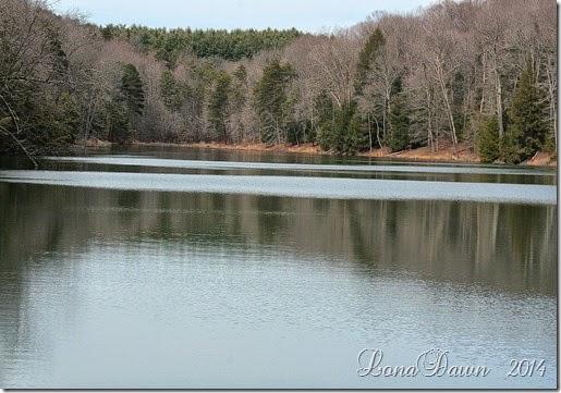 Rose Lake 2 Spring2014