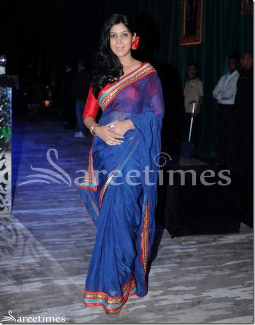 Blue_Transparent_Saree