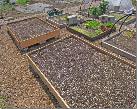 New raised beds filled with Mel's Mix