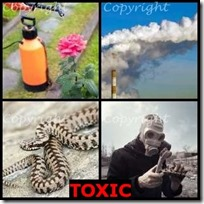 TOXIC- 4 Pics 1 Word Answers 3 Letters