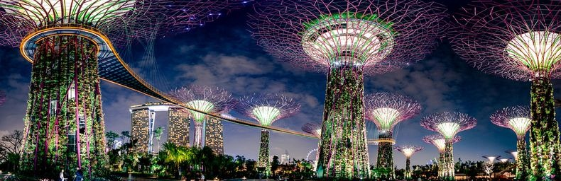 supertrees-singapore-6