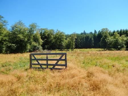 random gate