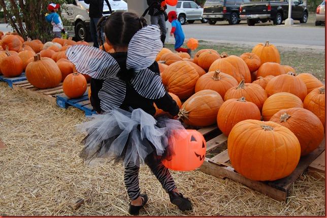 Buda Halloween 2011 004