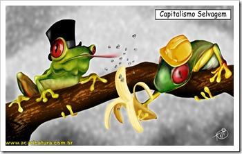 capitalismo-selvagem-web-ok