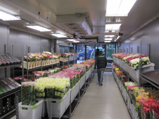 The entire store is a walk-in refridgerator and there are hundreds of varieties of roses.
