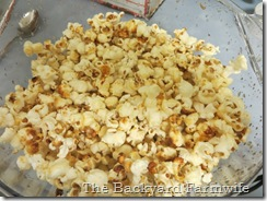 kettle corn - The Backyard Farmwife