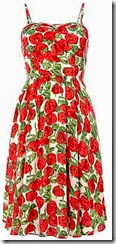 Louche Rose Print Summer Dress