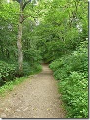 birks path