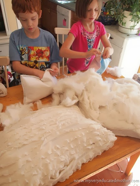 Stuffing Pillows