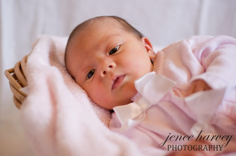 newborn-family session-5