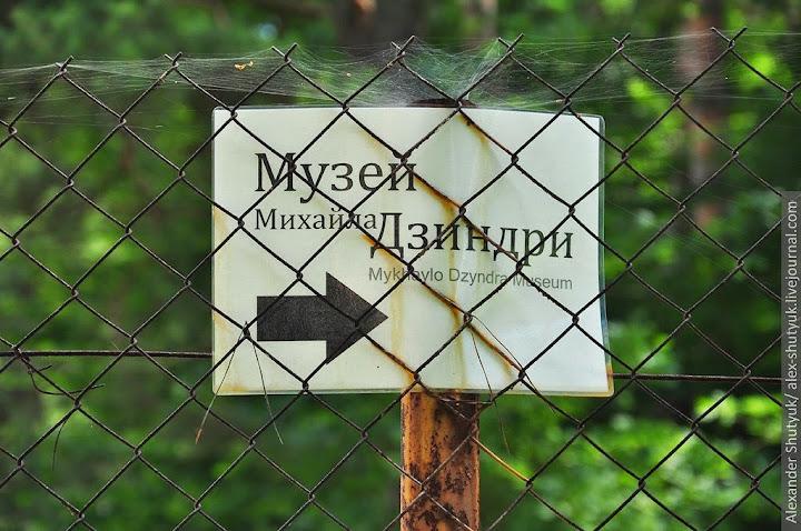 dzyndra-03.jpg
