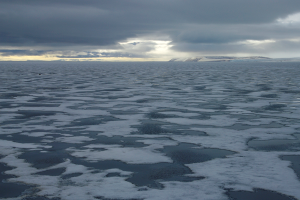 Arctic sea ice, viewed from Wahlenbergfjorden in Nordaustlandet, Svalbard. Photo: Harald Faste Aas / Norwegian Polar Institute