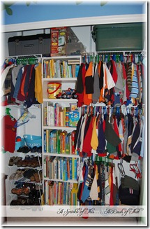 Closet Organization with books {A Sprinkle of This . . . . A Dash of That}