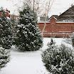 снежная зима 08-09 года (20).jpg