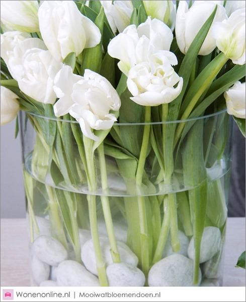 aan-de-slag-met-tulpen-4