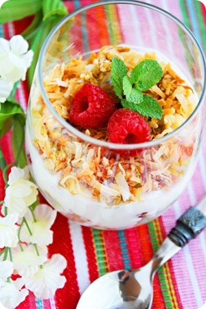 Coconut Granola, Yogurt and Fruit Parfaits | Pinnutty.com