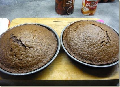 fudge cake3