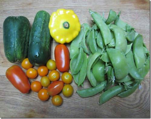 Pickling cukes, tomatoes, snow peas and squash