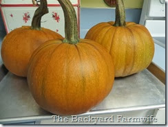 Bourbon Orange Pumpkin Butter - The Backyard Farmwife