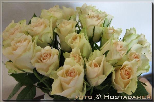 roser_03