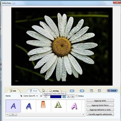 sditare-foto-animazione-flash