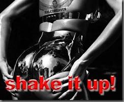 _wsb_449x367_SHAKE IT UP LOGO