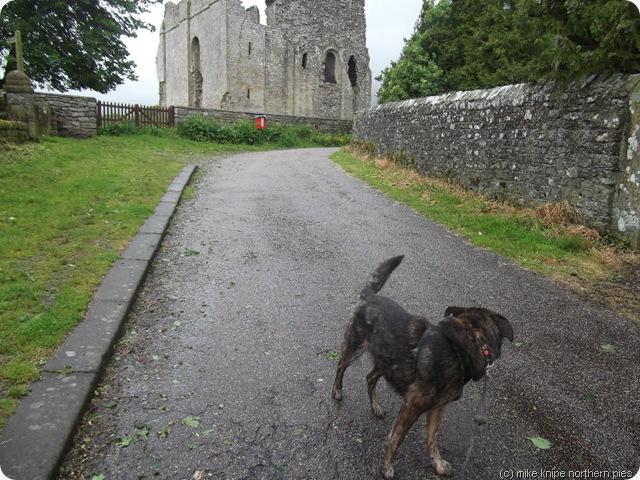 bruno denies damaging the castle