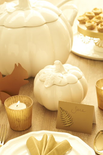 This paper squirrel from Paper Source makes for cute table decor -- you can use as placecards. For the place cards I created, I took Paper Source paper and folder into tented cards, then added a few Martha Craft stickers to make hem more special. The MS Collection Figural Pumpkin collection is perfect for this Holiday!