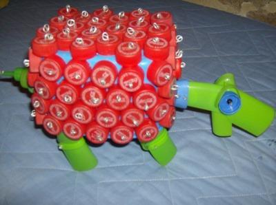 tartaruga vermelha