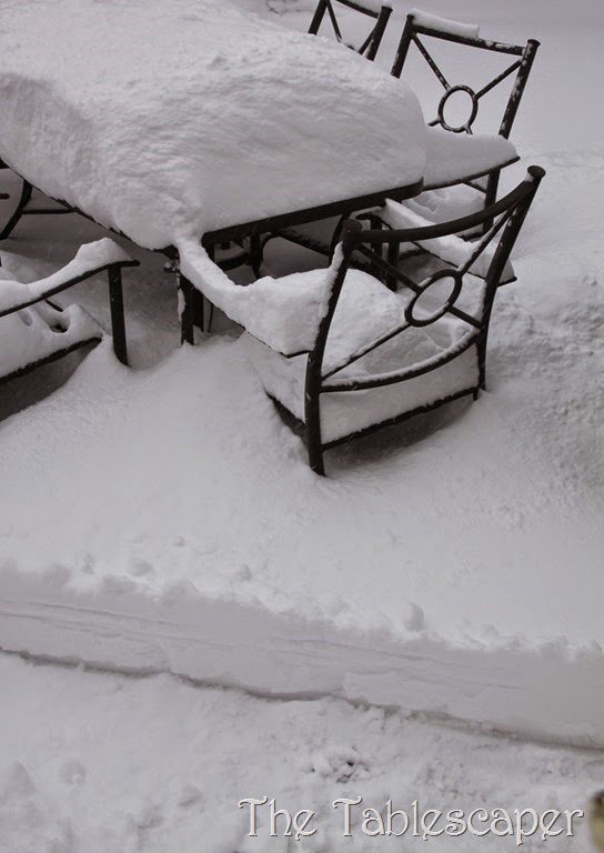January Snow Storm Juno 021