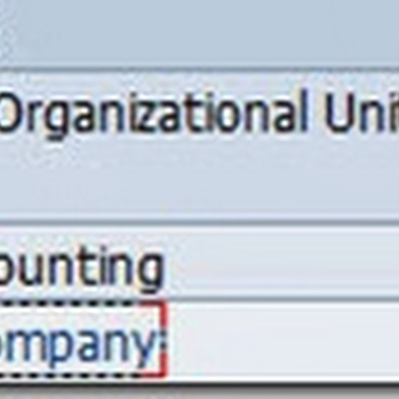 Company and Company code Creation configuration in SAP-Part 1