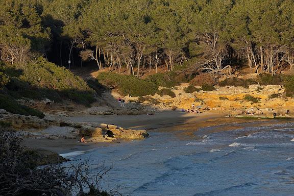 Cala Calabeig o de la Roca Plana i el bosc de la Marquesa, espai natural protegit, a l'extrem nord de la platja Llarga,  Tarragona, Tarragonès, Tarragona