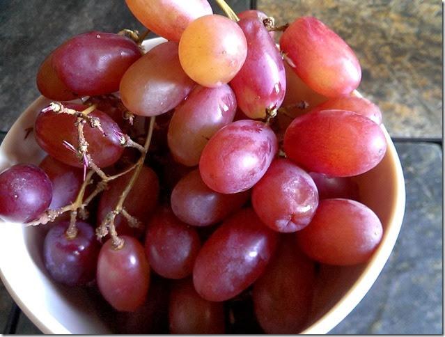 grapes-public-domain-pictures-1 (2245)