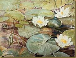 potterlillypads