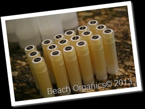 Beach Organics Behind the Scenes Lip Balms