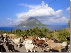 Griekenland 2010 024