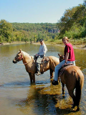 Horses standing upriver