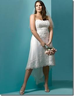 Fotos e imagenes de vestidos para novias gorditas comprar o alquilar