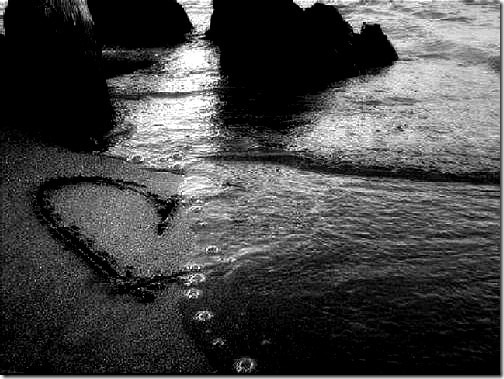 amor 2 (9)