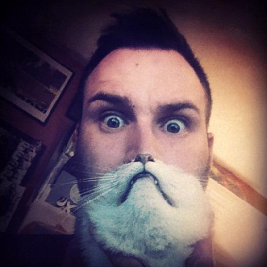 Barbas de gato (2)