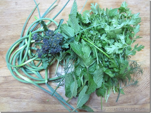 scapes_and_herbs